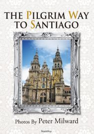THE PILGRIM WAY TO SANTIAGO