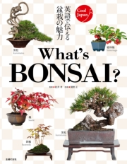 What's BONSAI ?