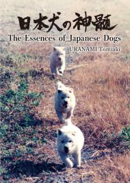 The Essences of Japanese Dogs
