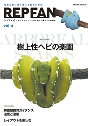 REPFAN vol.11